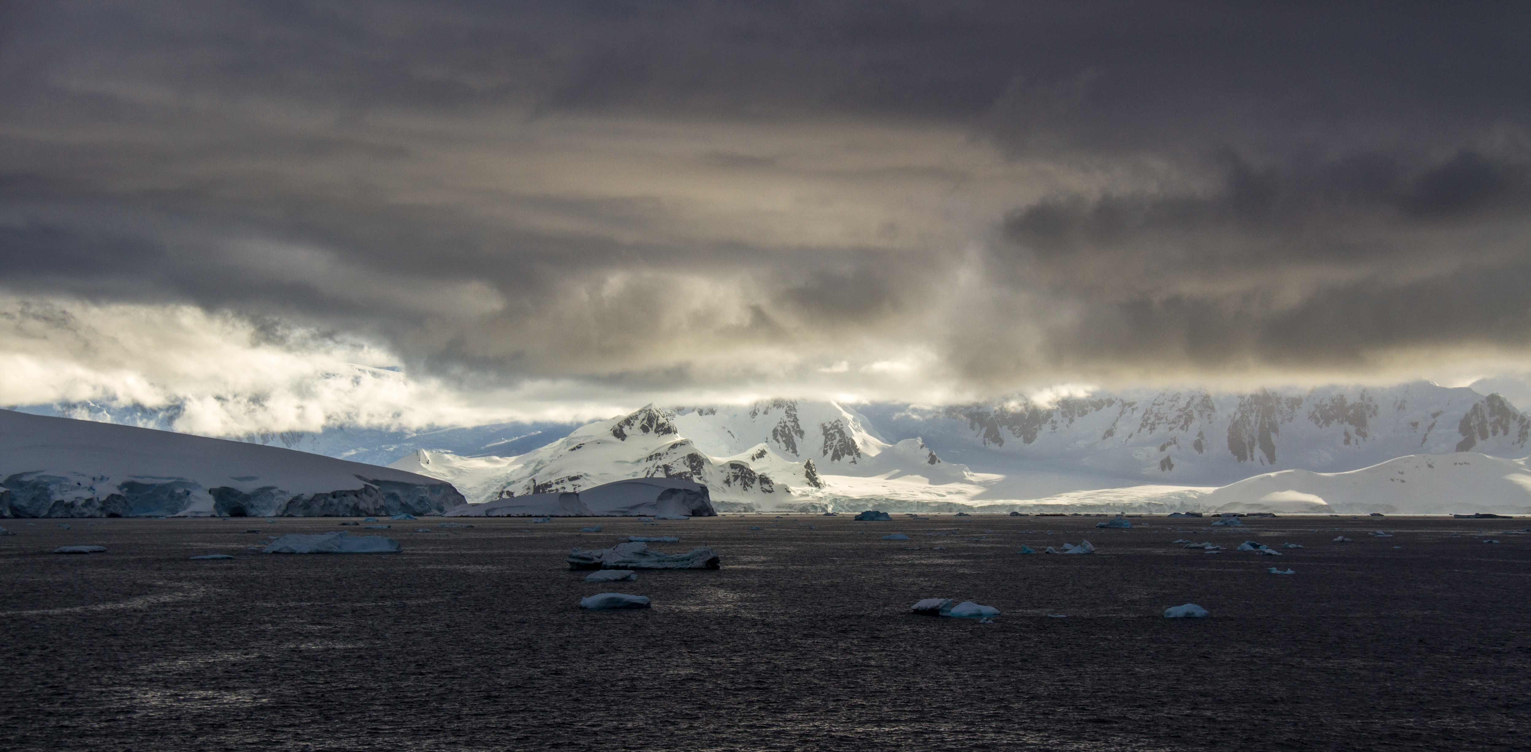 Personified Antarctic Benshook